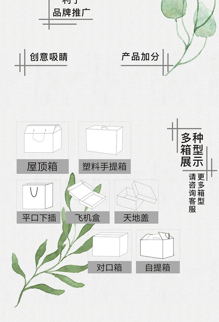电子产品包装设计-蓄电池包装纸箱定制 (4)